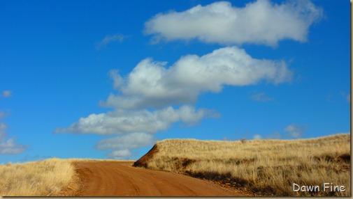 San Rafael Grasslands_021