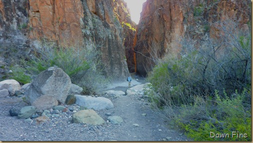 Big Bend Ranch State park_115