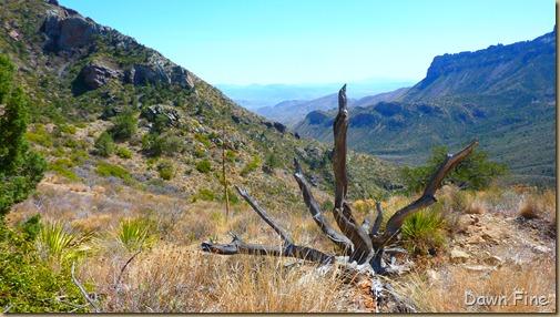Lost Mine Trail_081