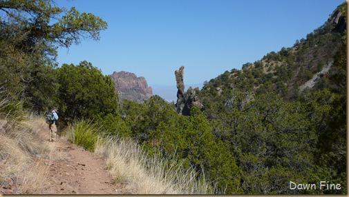 South rim hike,Big bend_061