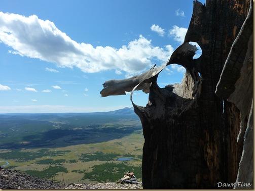 Bunson peak hike_20090901_041