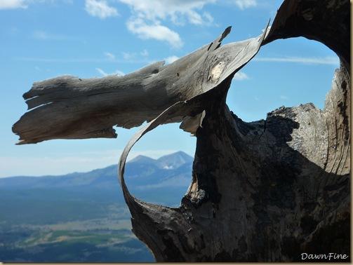 Bunson peak hike_20090901_042