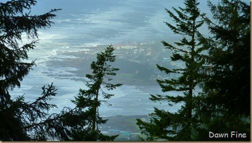 oregon coast drive_010