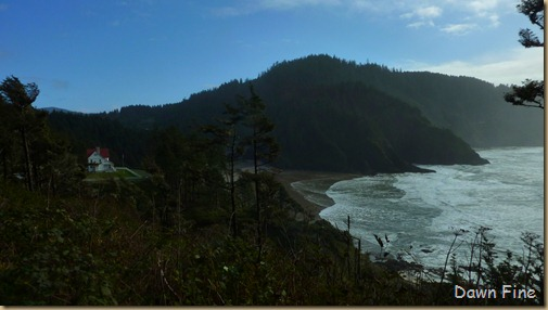 oregon coast drive_034