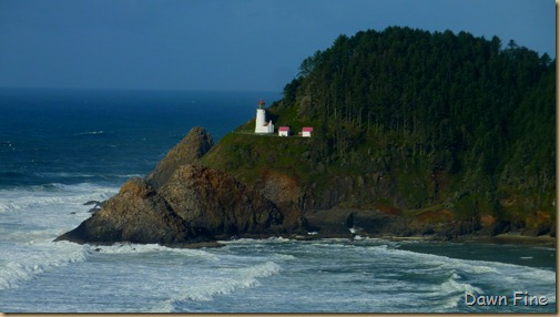 oregon coast drive_042