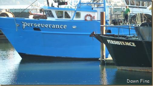 boats newport_013
