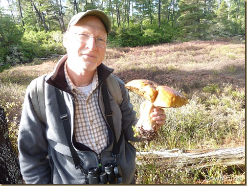 Mushroom picking sutton_045