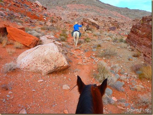 horseback riding with merrilee_007