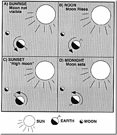 moonphasediagram.jpeg