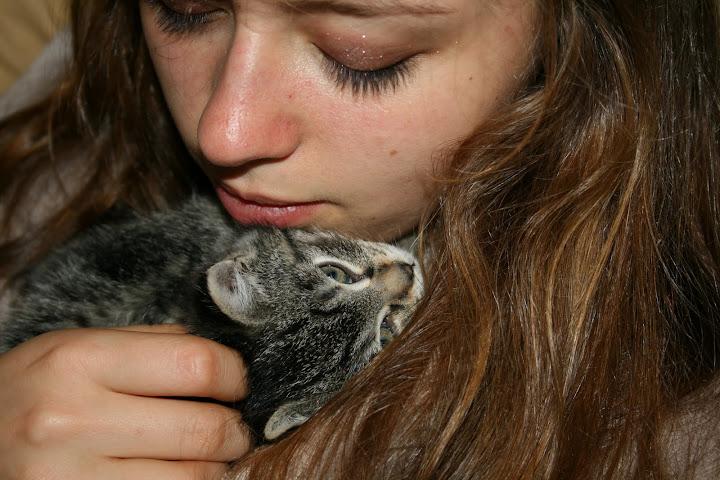 ZELIE & CLEMENTINE, chatonnes de 6 semaines à Lesquin (59) IMG_5077