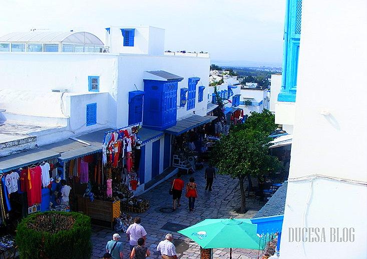 TUNISIA 2009 144