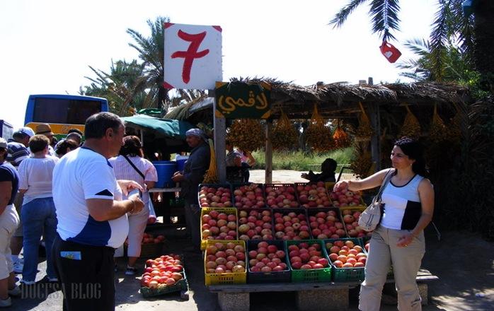 TUNISIA 2009 313