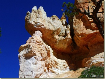 13 Rhino head hoodoo along Navajo Loop trail Bryce Canyon NP UT (1024x768)