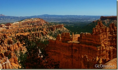 15 Looking across the hoodoos & beyond from Wall Street Navajo Loop trail Bryce Canyon NP UT (1024x606)