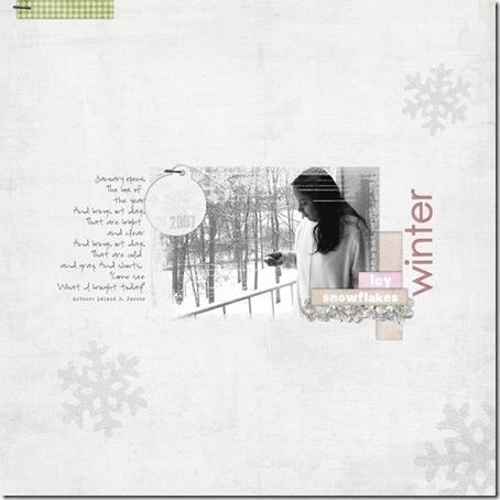 snow2_web