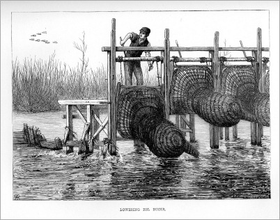 Lowering Eel bucks058