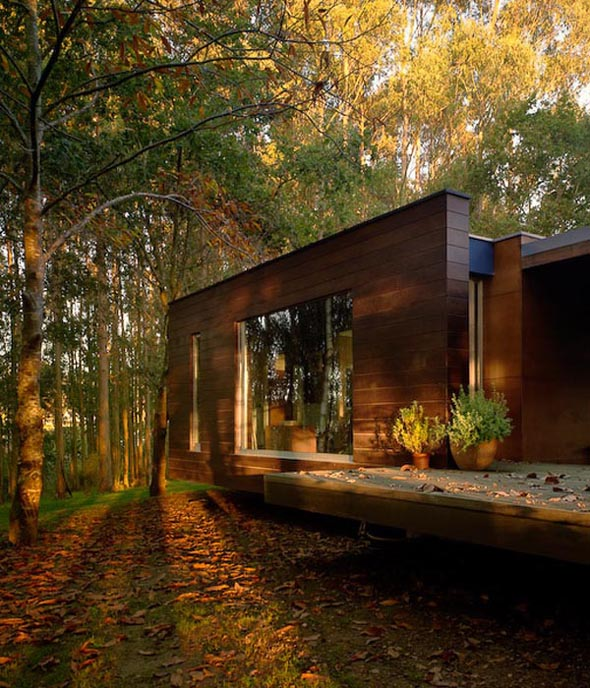 levitating modern forest house architecture design