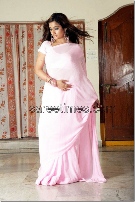 Kiran-Rathod-Plain-Sari