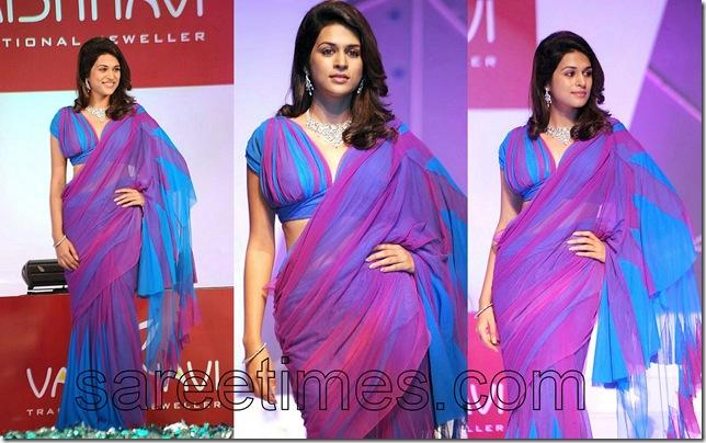 Srada-Das-Designer-Ruffled-Sari