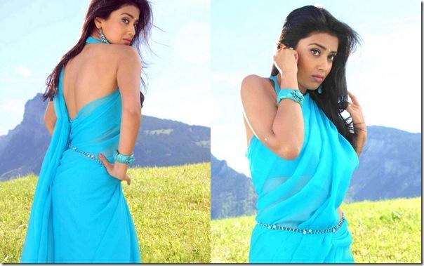 Shriya-Plain-Blue-Sari