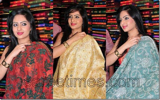 Nikesha-Patel-Designer-Saris