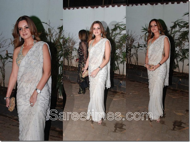 Renu Chainani_White_Plain_Sari