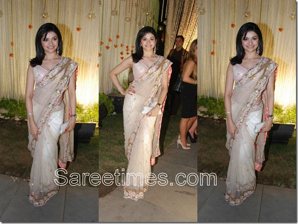 Prachi_Desai_White_Embroidery_Sari