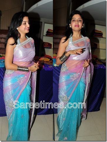 Poonam_Kaur_Blue_Net_Saree