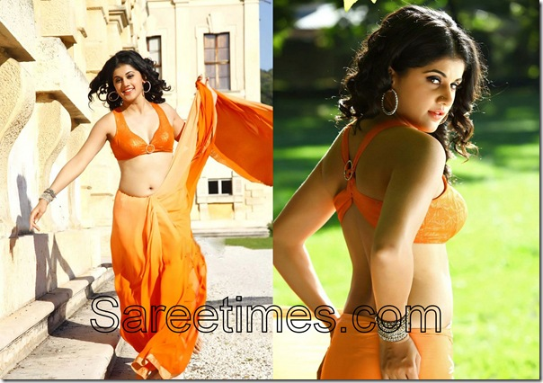 Taapsi_Orange_Sexy_Saree