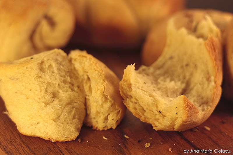 paine aromatica