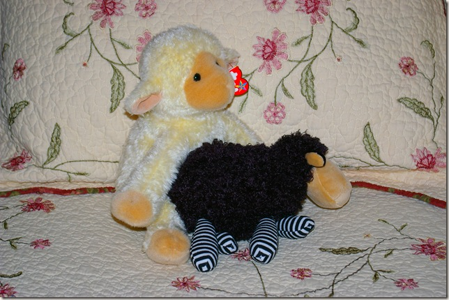 """Two sheep looking like they are """"getting it on"""""""