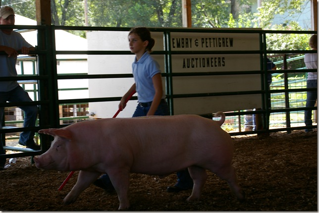 Cara walking her pig