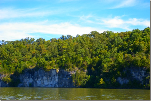 Tall bluffs with trees on top
