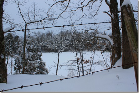 jan 11 snow 040