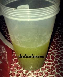 Dalindareen3233