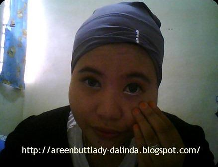 Snapshot_20110122_18
