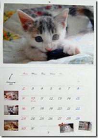 nekodo-calendar2