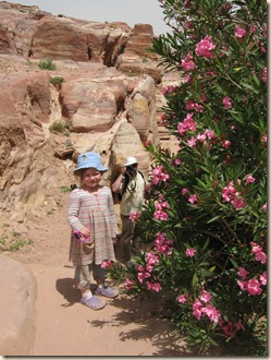 Oliander blooming in the desert with Lillian and Daddy.
