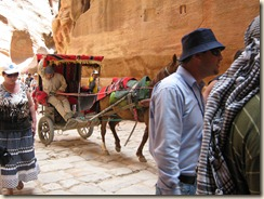 These carriages would run through the siq. The poor horses shoes slipping on the rock road.