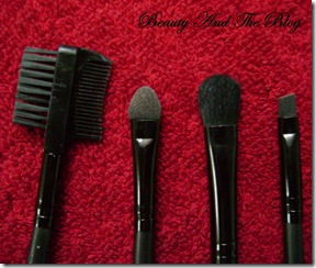 7 Piece Brush Set From Buy In Coins Review