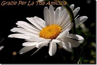 grazie_per_la_tua_amicizia_Antonella