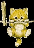 catClothespin