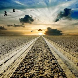Road to Destiny by Sandeep Nagar - Landscapes Sunsets & Sunrises ( clouds, sand, beach, road, landscape, long way, sun, distiny, sky, blue, sunset, surel, landscape photography, , path, nature )