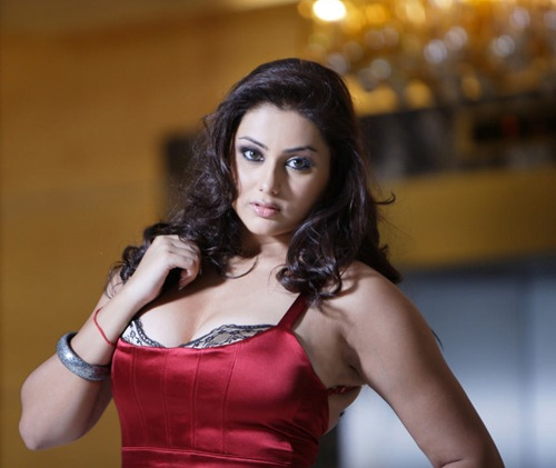 Namitha Navel, Namitha Navel hot photos, sexy Namitha Navel, hot Tamil actress, hot actress in world