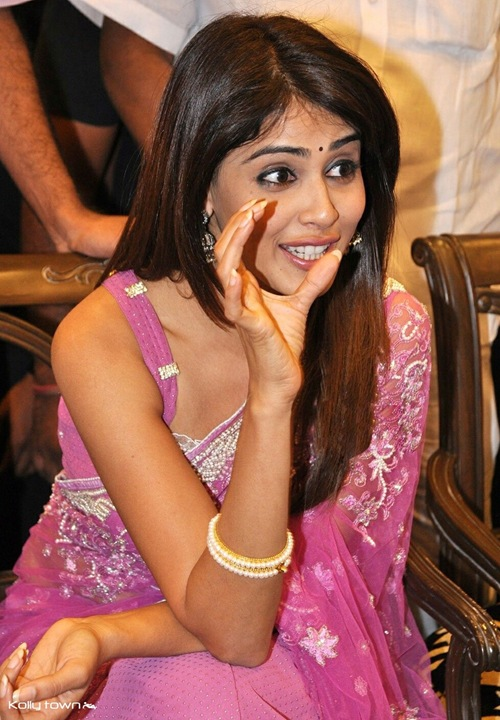world hot actress, sexy genelia, hot genelia, genelia, hot tamil actress, sexy genelia, hot tamil girls, south indian actres