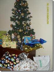 dezembro 2010 104