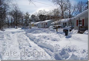 snow feb 7, 2010 001