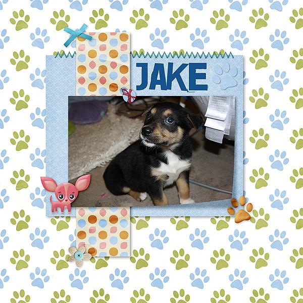 Jake600