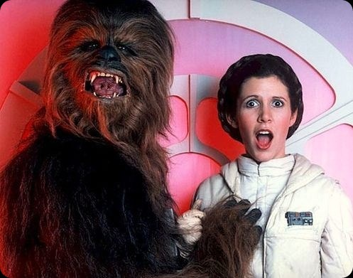 cool star wars photo chewie loves leia