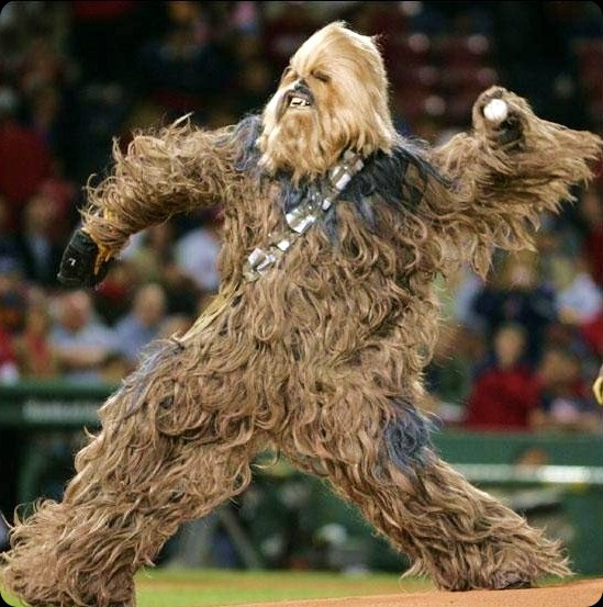 cool star wars photo wookie
